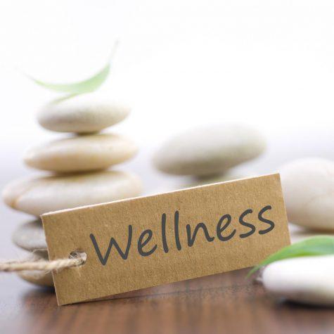 Wellness and Boredom in Quarantine